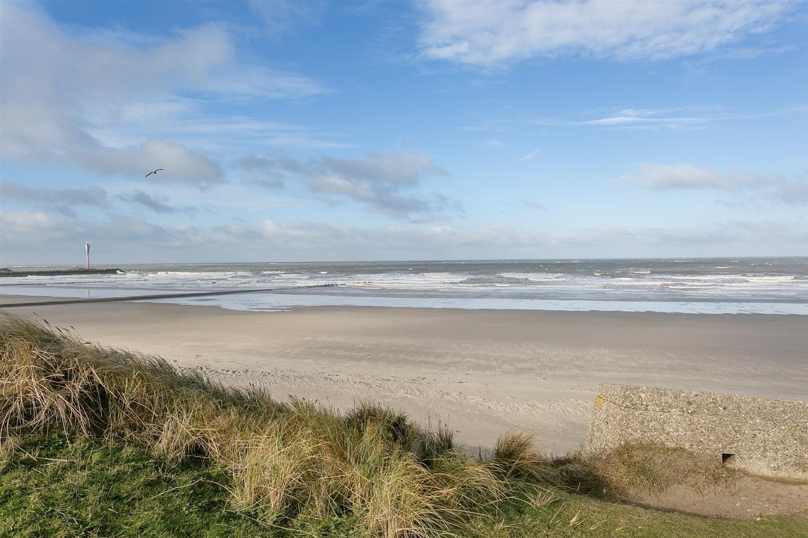 Luxueuze & gunstig gelegen eigendom aan de duinen/strand